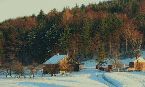 Zdjecie POLSKA / beskid  / Przełęcz Carchel / zimka