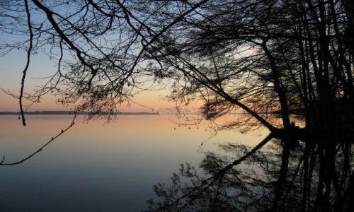 Zdjecie POLSKA / zachodniopomorski / Miedwie, Morzyczyn / Zimowa tęsknota nad