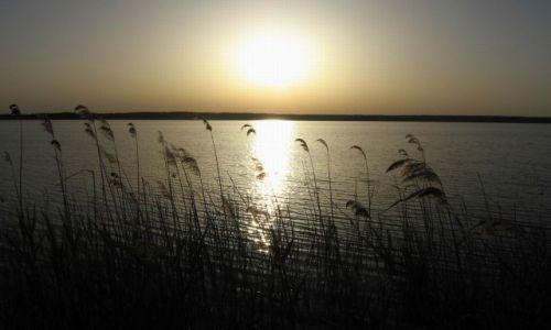 Zdjecie POLSKA / Zachodniopomorskie / Świdwie / Jezioro Świdwie, teren rezerwatu