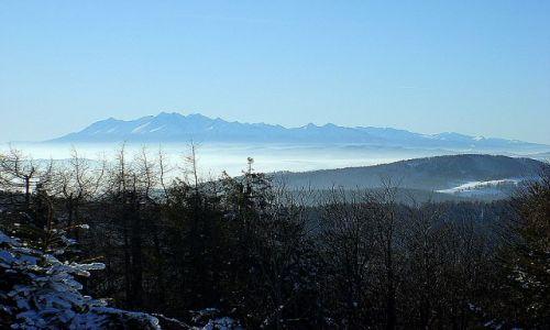 Zdjecie POLSKA / widok z Jaworzyny Krynickiej / panoram Tatr styczeń 2009 / swojskie widoki