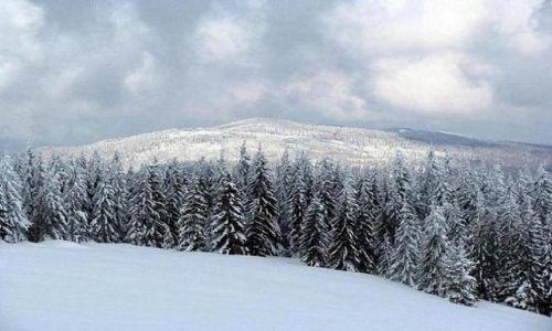 Zdjecie POLSKA / brak / Gorce / Gorce zimą