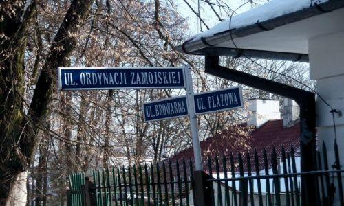 Zdjecie POLSKA / Lubelszczyzna / Ulice ze Szlacheckim odgłosem / Zwierzyniec- Piękno Roztocza
