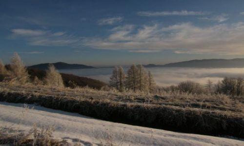 Zdjecie POLSKA / Gorce / masyw Lubania / zima w Gorcach