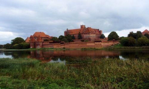 Zdjecie POLSKA / Pomorze / Zamek Krzyżacki / Malbork- Zamek