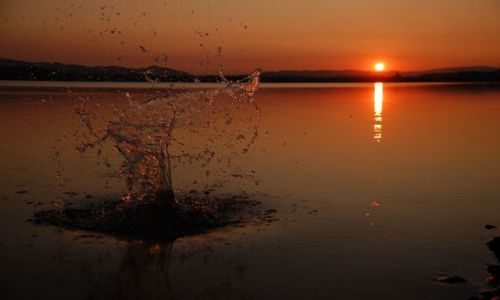 Zdjecie POLSKA / Opolszczyzna / Jezioro Otmuchowskie / Plum...o zachodzie słońca