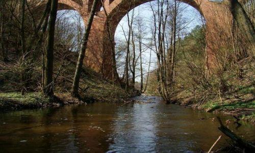 Zdjęcie POLSKA / pomorski / Sepolanski Park Krajobrazowy / zapomniany most