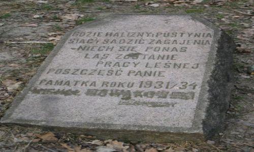 Zdjecie POLSKA / Mazowsze / Mazowiecki Park Krajobrazowy / Kamień Leśników
