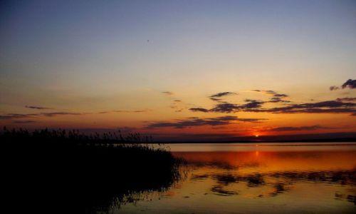 Zdjęcie POLSKA / brak / okolice Sławy / Nad jeziorem
