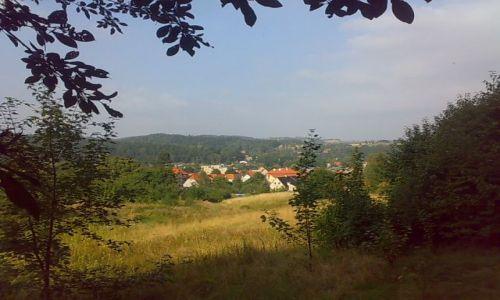 Zdjecie POLSKA / dolny śląsk / Jedlina Zdrój / Jedlina-Suliszów