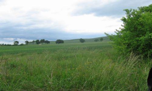 Zdjecie POLSKA / zachodniopomorskie / Mętno, szlak niebieski wzgórz morenowych / Okolice Mentna