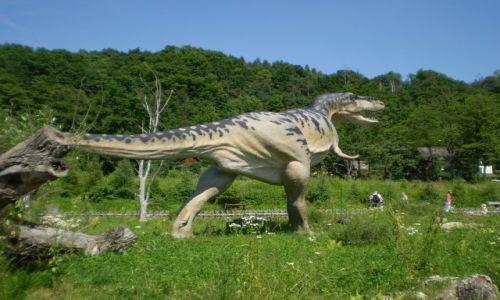 Zdjecie POLSKA / świętokrzyskie / Bałtów / Dinozaur