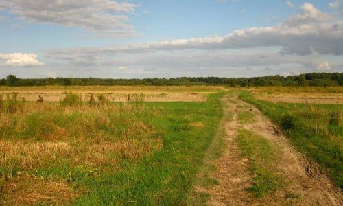 Zdjecie POLSKA / Mazowsze / Mazowiecki Park Krajobrazowy / Ponurzyckie