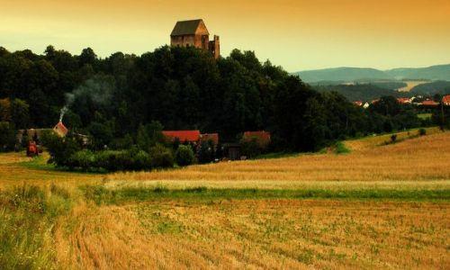 Zdjecie POLSKA / Dolny Śląsk / rów koło drogi / Zamek Świny dla Qmoszki