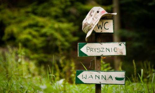 Zdjęcie POLSKA / Beskid Niski / Regietów Niżny / II