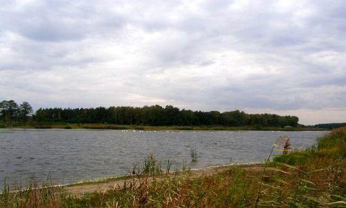 Zdjecie POLSKA / łódzkie / Zgniłe Błoto / mokre impresje