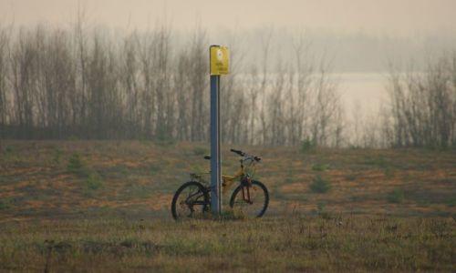 Zdjecie POLSKA / brak / prz ścieżce rowerowej / samotny rower