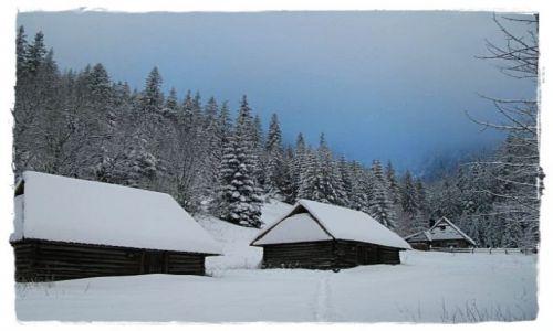 Zdjęcie POLSKA / -Tatry / ok.Doliny Strążyskiej / Zima....cd.
