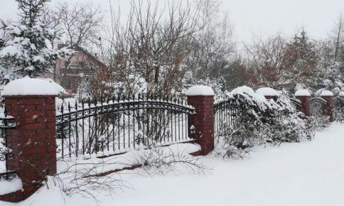 Zdjęcie POLSKA / Dolny Śląsk / Kunice / Może to już tylko ... wspomnienie - pada śnieg !