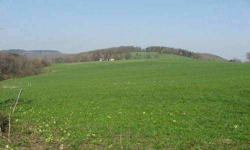 Zdjecie POLSKA / Beskid Śląski / Tuł / Konkurs-zielono mi ... tak wiosennie