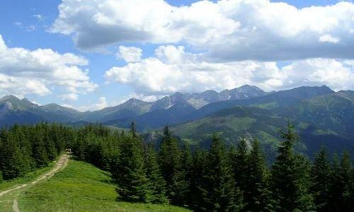 Zdjecie POLSKA / Tatry / szlakiem z Rusinowej Polany na Gęsią Szyję / Hej góry, moje