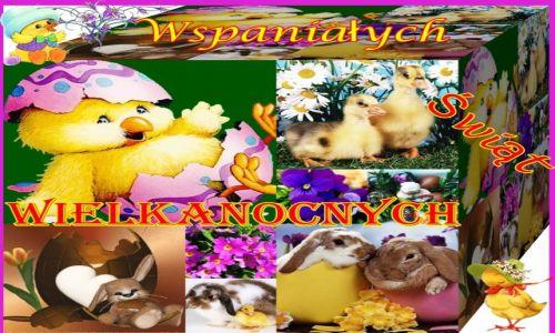 Zdjecie POLSKA / cały swiat / Wszystkiego co najlepsze na Święta Wielkiej Nocy, wiosennych nastrojów, / WESOŁYCH ŚWIĄT WIELKIEJ NOCY :)