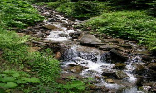 Zdjecie POLSKA / Tatry / gdzieś na szlaku ... / górski potok