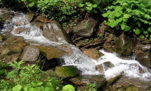 Zdjecie POLSKA / Tatry / gdzieś na szlaku ... / kojący szum górskiego potoku...