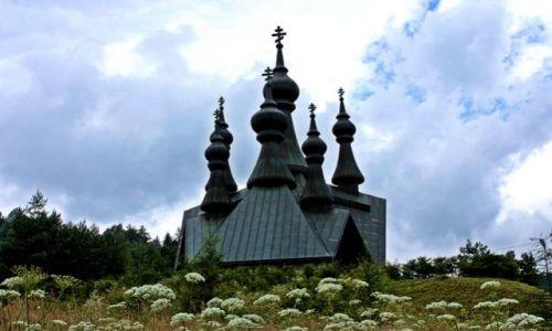 Zdjęcie POLSKA / - / Krynica Górska / Cerkiew zatopiona w zieleni