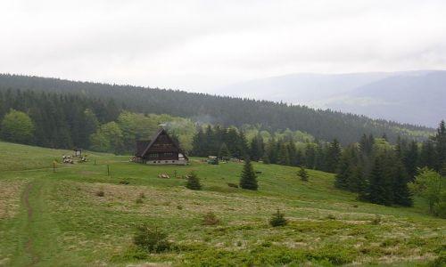 Zdjęcie POLSKA / Beskid  Żywiecki / Rycerzowa / moje wędrowanie po Beskidach ...czyli bacówka, morze chmur i... pusto :-)