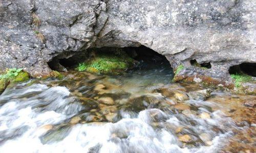 Zdjecie POLSKA / Tatry / Dolina Kościeliska- Lodowe Źródło / moje wędrówki po Tatrach...osobliwości przyrodnicze Doliny Kościeliskiej