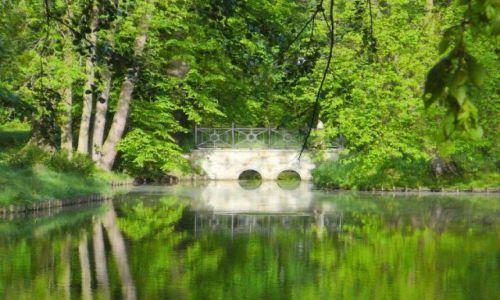 Zdjęcie POLSKA / śląskie / Pszczyna / wiosna w parku pszczyńskim