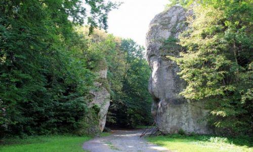 Zdjęcie POLSKA / małopolska / Ojcowski Park Narodowy / Brama Krakowska
