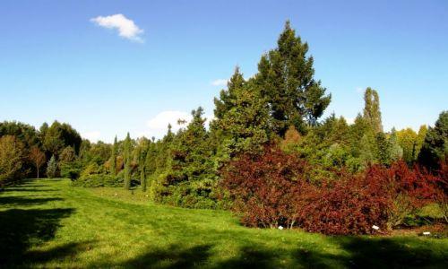 Zdjęcie POLSKA / Mazowsze / Ogród Botaniczny / Niedziela w Powsinie