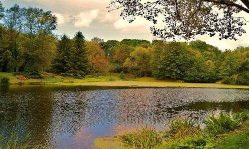 Zdjecie POLSKA / lubelszczyzna / Ogród Botaniczny w Lublinie / Pierwsze kolory jesieni