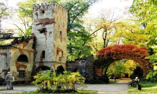 Zdjecie POLSKA / łodzkie / Park Romantyczny w Arkadii / Jesienne obrazki z Arkadii
