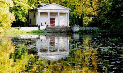 Zdjecie POLSKA / łodzkie / Park Romantyczny w Arkadii / Jesienne obrazk