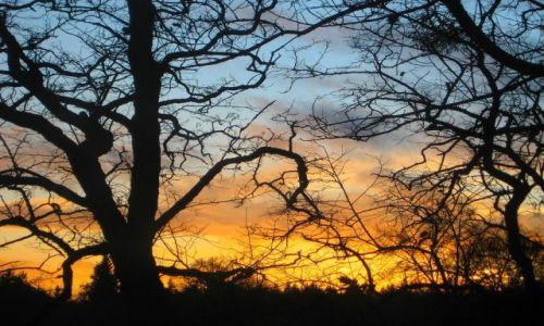 Zdjęcie POLSKA / Zachodniopomorskie / Połczyn - Zdrój / listopadowy zachód słońca