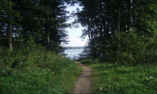 Zdjęcie POLSKA / Suwalszczyzna / Kłajpeda, Stara Hańcza / ścieżka nad jezioro Hańcza