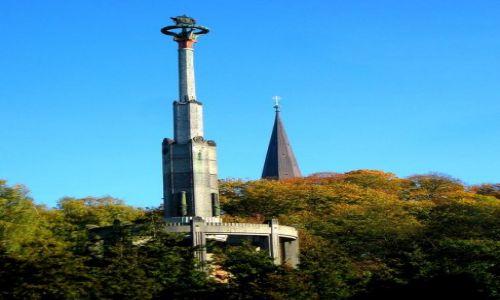 Zdjecie POLSKA / Zachodniopomorskie / Stargard / chyba już jedyny w Polsce pomnik