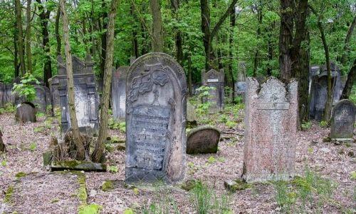 Zdjecie POLSKA / łódzkie / Łódź / macewy na Cmentarzu Żydowskim