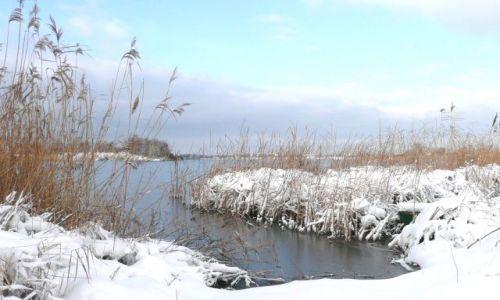 Zdjęcie POLSKA / Dolny Śląsk / Kunice / Jezioro zamarza