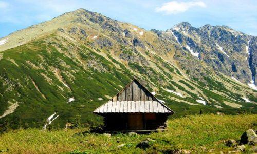 Zdjecie POLSKA / Tatry / Dolina Gąsienicowa / domek w górach