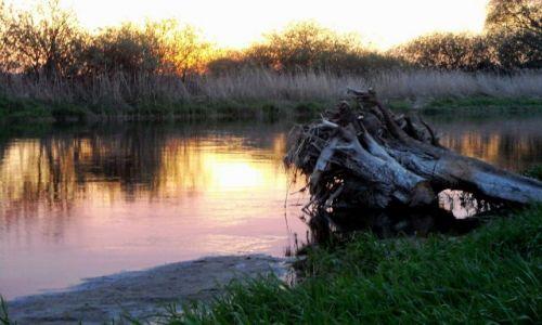 Zdjęcie POLSKA / Świętokrzyskie  / Ponidzie / Kolorowa rzeka Nida