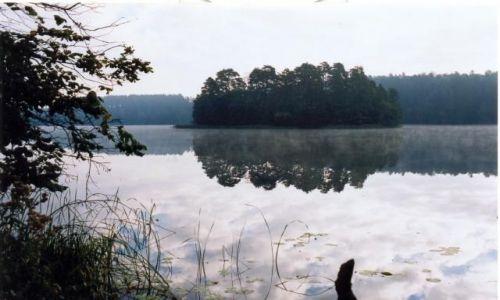 Zdjecie POLSKA / Mazury / Jezioro NIdzkie / Poranek nad jeziorem