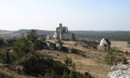 Zdjecie POLSKA / Jura / widok na ruiny zamku Mirów / Szlak Orlich Gniazd