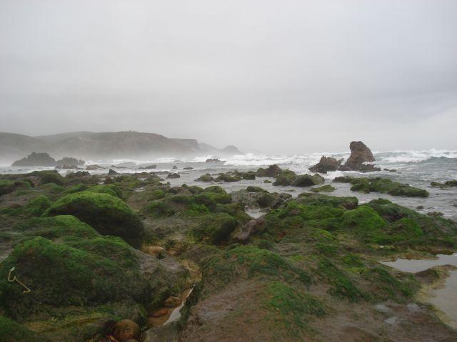 Zdjęcia: PLAŻA -KOŁO BORDEIRA, OCEAN DZIKA PLAŻA, PORTUGALIA