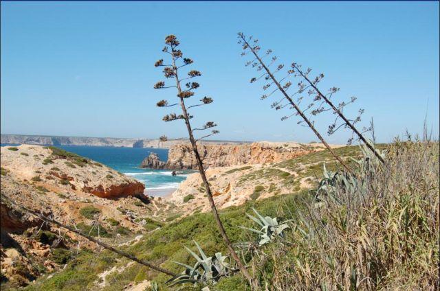 Zdjęcia: Sagres, Algarve, Spokoj wielki spokoj..., PORTUGALIA