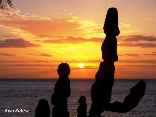 Zdjęcia: Machico, Wyspa Madera, Machico - widok z okna hotelowego, PORTUGALIA
