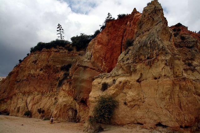Zdj�cia: praia de rocha, algarve, urwisko, PORTUGALIA