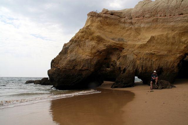 Zdjęcia: praia de rocha, algarve, zwierze, PORTUGALIA